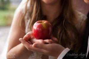 jabłko 047