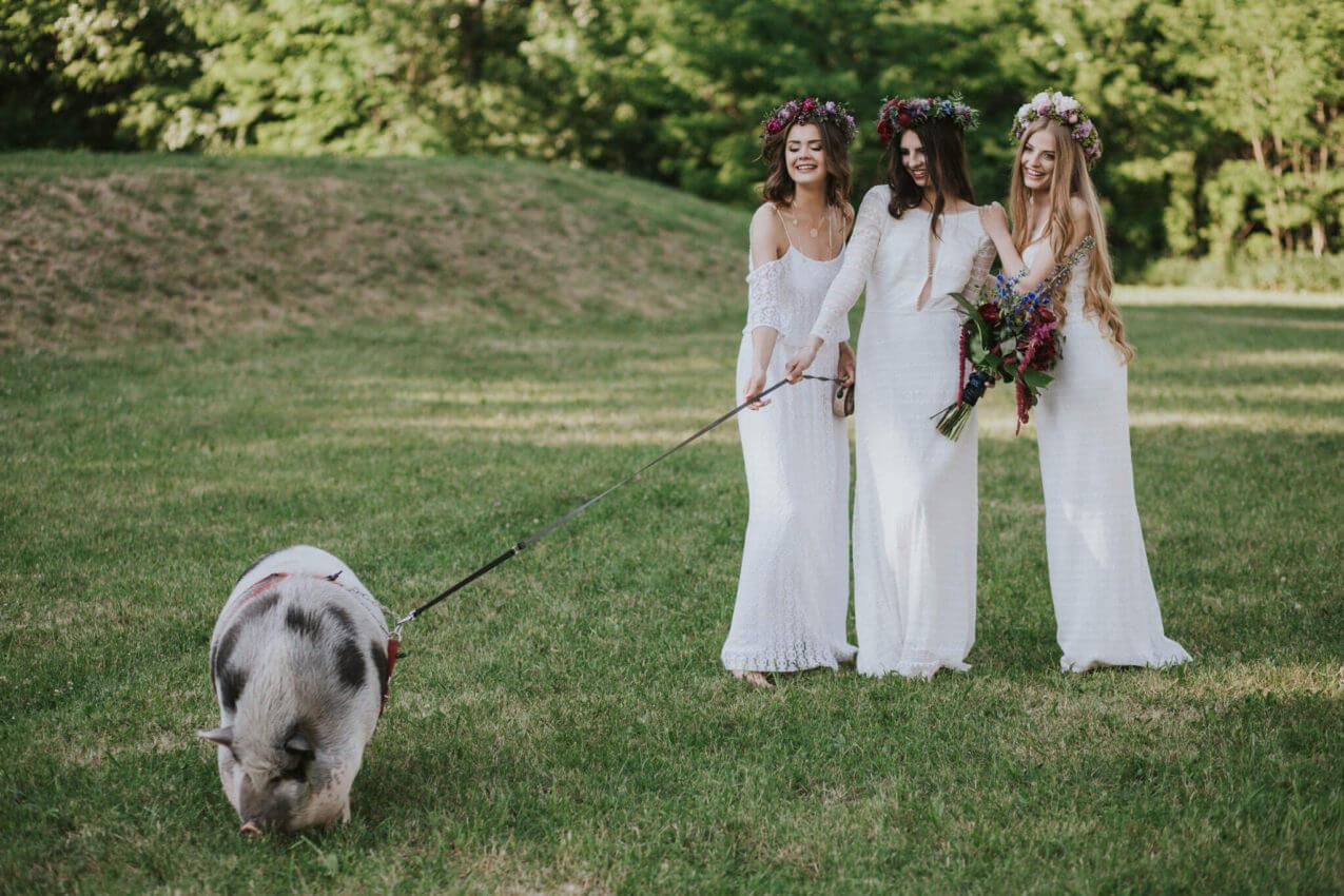 3 panny młode sesja ze świnią