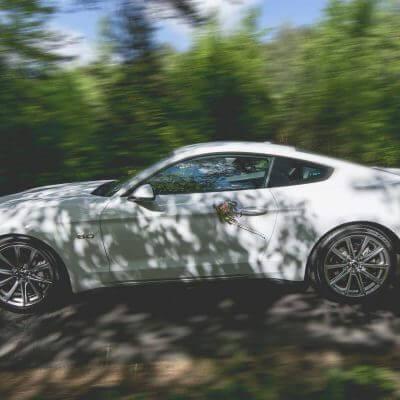 Mustang doślubu